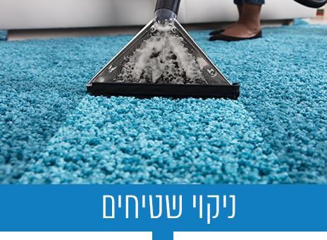 ניקוי שטיחים_btn